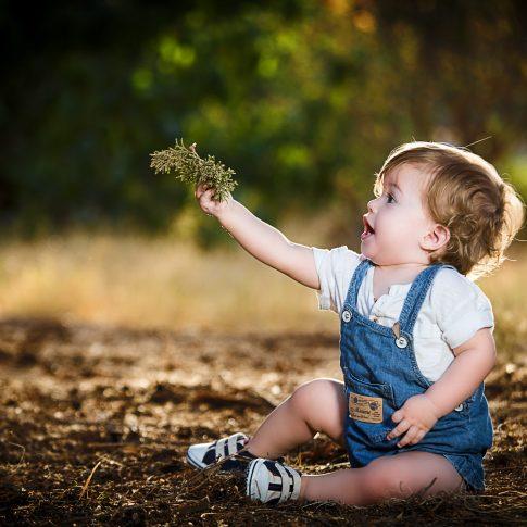 ילד מתפעל מענף בצילומי ילדים