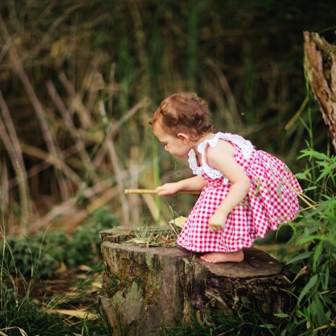 ילדה בשמלה אדומה משובצת על גזע