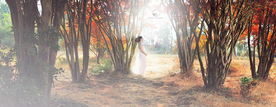 צילומי הריון מקוריים ביער