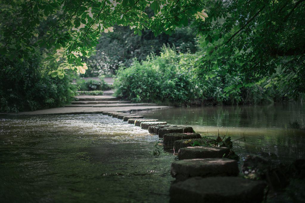 צילומי גשר אבנים בנחל